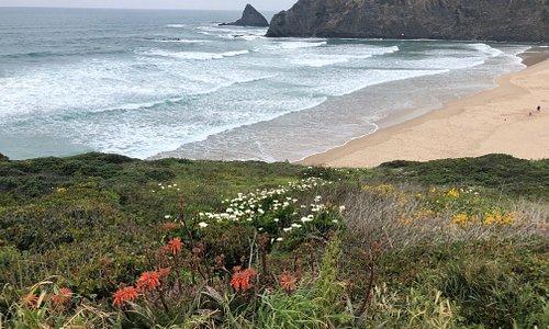 Meu favorito - Praia Odeceixe - Portugal - Miradouro da Maravilha - Abril 2019