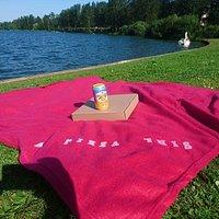Borrow a picnic rug from us