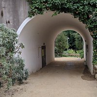 Jardi Botanic Historic
