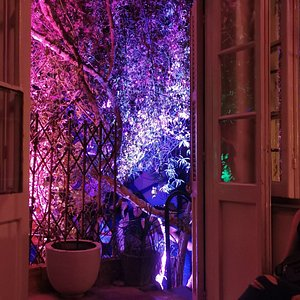 The view from inside towards the garden; magical :)