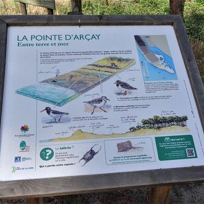 La Pointe d-Arcay
