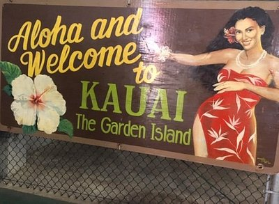 What to do on Kauai, consider A1 Lift, taxi and tours
