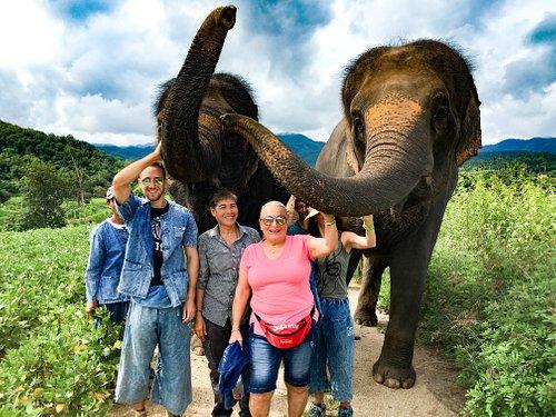 trekking with an elephants.