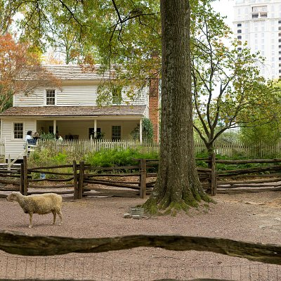 Wander the grounds of Smith Family Farm to learn about farming in the 19th century.