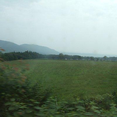 牧草地の中に看板が見えます