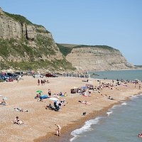 Ecclesbourne Glen is the dark green V in the middle of the cliffs (beach is Rock-a-Nore)