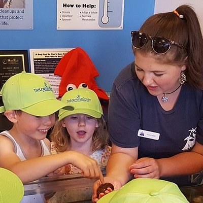 Visitors from a summer camp view marine life with one of our educators.