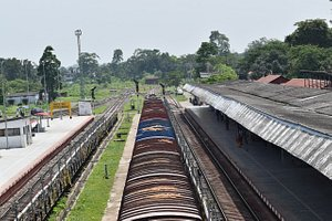 Top view of Mariani Junction.Mariani is the major railway junction of Jorhat district. It serves Jorhat City, Mariani and its surrounding area as well. It is 18 km from Jorhat City.