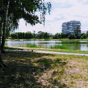Park Pryozernyi