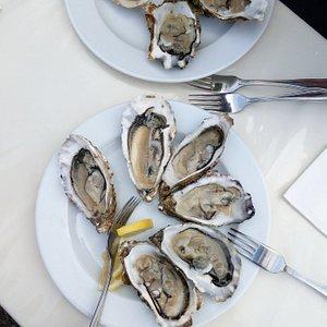 Austern vom Rungis