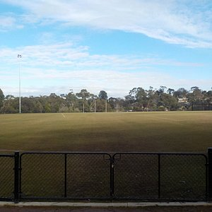 The wide expanse of the playing field