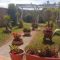 i nostri giardini e spazzi esterni