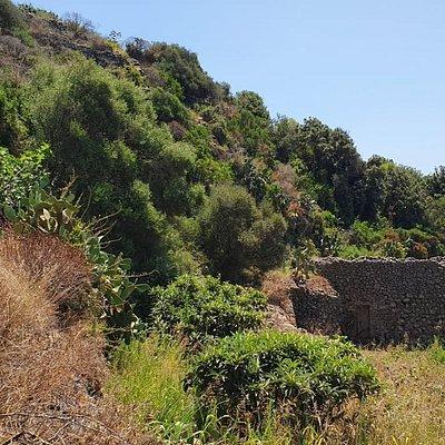 Grotta Del Freddo
