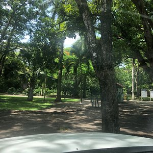 Jardin Botanico Unacar