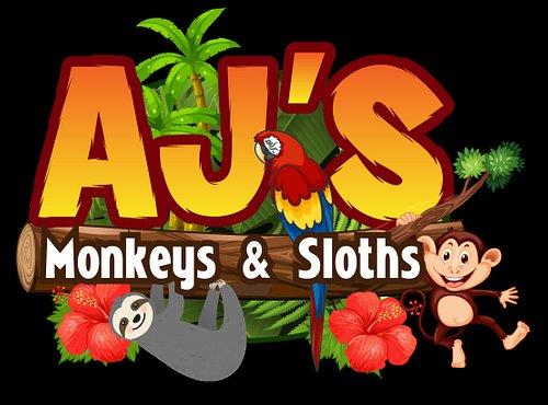Ajs new Logo