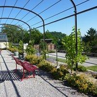 Le jardin conventuel des Cordeliers à Fribourg, un havre de paix bien agréable avec vue panoramique...