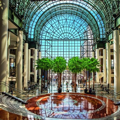The Winter Garden at Brookfield Place, 16 live palm trees grace the atrium overlooking our outdoor plaza on the Hudson River.