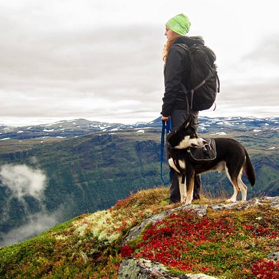 A hiker with her dog