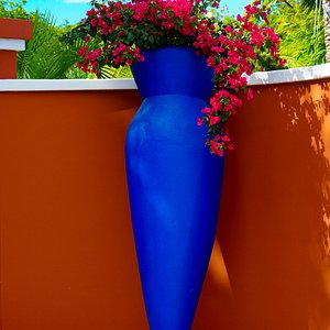 The entrance to Cedars Pottery and Gallery is looking very vibrant!
