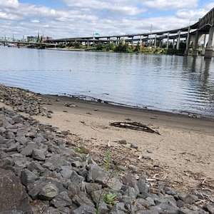 Small city beach in theWillamette river at Portland