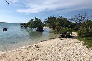 Zupełnie dziki zakątek  Niestety plaża główna była w dniu odwiedzin zamknięta pozostały obrzeża Wielki płac budowy niedługo staną tam kompleksy hotelowe na razie szkoda czasu zero zagospodarowania