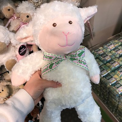 Sheep toys and the best soft toy souvenir range in Rotorua