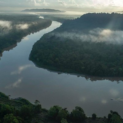 Aerial view of the Kinabatangan River Wildlife sanctuary