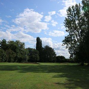 コース景観。 木が大きい!