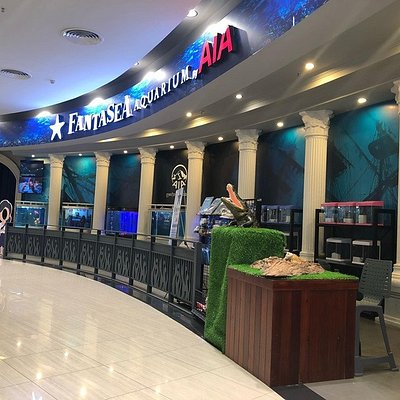 Fantasea Aquarium is the first aquarium in Phnom Penh, we have hundred of reptile, fresh water and sea water fish. We locate at Aeon Mall Sen Sok, 1st floor. Visit us now for our in coming special promotion on Pchhum Ben Day.  Ticket price on weekday 4$ for kid and 5$ for adult.  Ticket price for weekend 6$ for kid and 8$ for adult (50% discount on second person)
