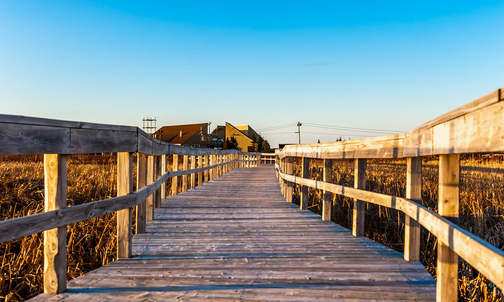 Passerelles Boardwalk