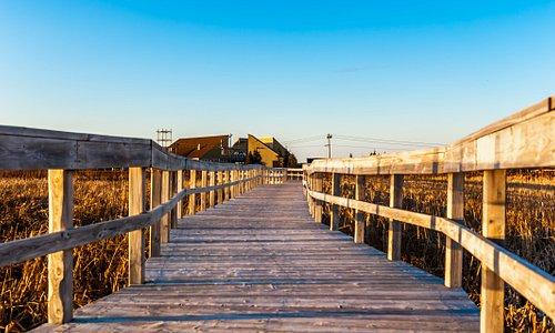 Passerelles Boardwalk