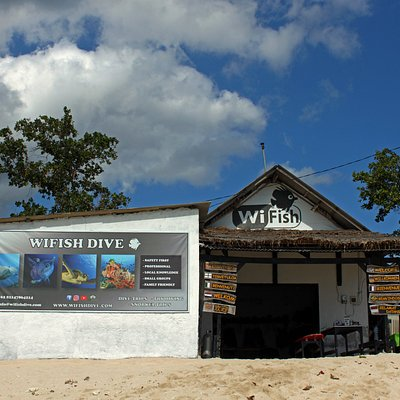 WiFish beachside Dive Center