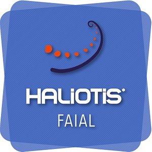 Haliotis Faial