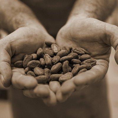 Chocolates Pérez
