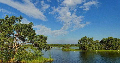 Kalametiya Bird Sanctuary