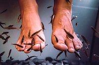 Das fußfetifisch was ist Fußfetisch ist