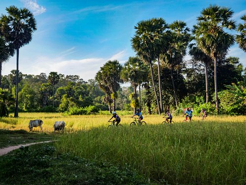 Peaceful surroundings outside of the Angkor Temples