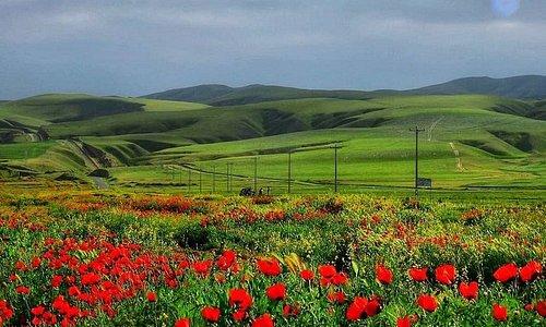 Kalpush Plain
