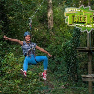 Zip through the air at Heatherton's Tree Tops Trail in Pembrokeshire!