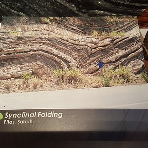Informative and interesting section on rock folds