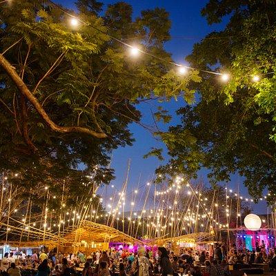 Festival Park