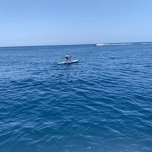 Paddle Boarding on boat