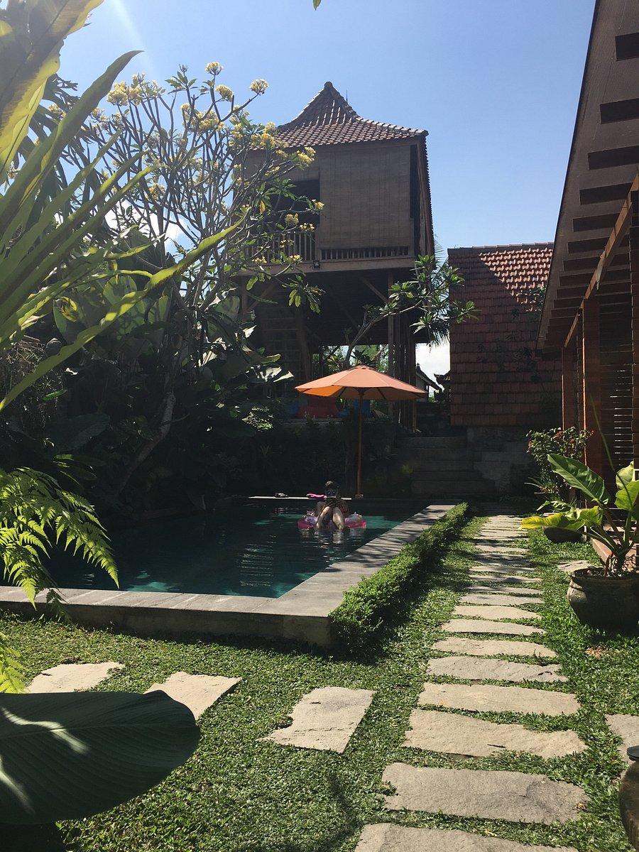 Dedeane Ubud Prices Villa Reviews Bali Tripadvisor