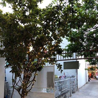 Nice Homestay and the best coffee in Nha Trang city .  Cafune Homestay & Coffee 73/4 Bắc Sơn , Vĩnh Hải, Nha Trang.