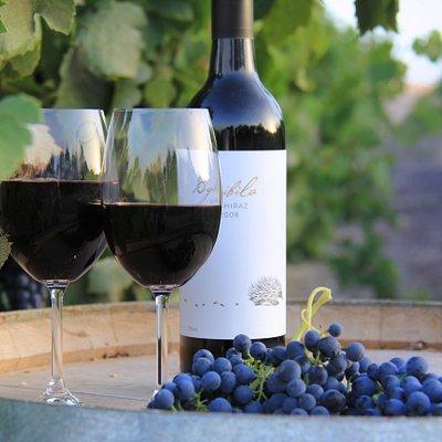 Bigibila Wines - Free Range Wines from the Pyrenees.