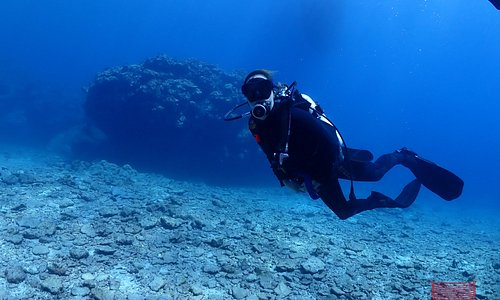 Water is so clear and beautiful, you can see 20m in the distance, perfect condition to enjoy fun diving !