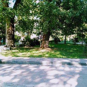 Square of Kyiv Intellectuals