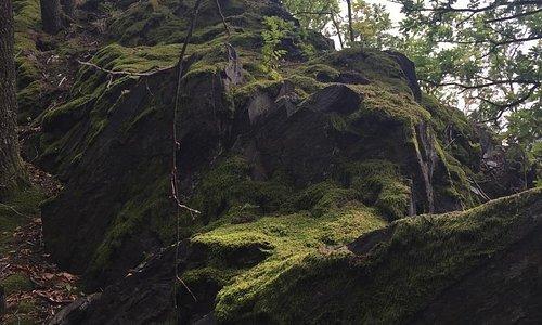 Niebieski szlak Jarnołtówek góry Opawskie