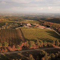 Aerial View of Podere Collalto Vineyards and Winery