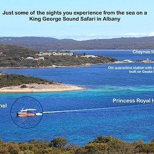 Just some of the sights you experience from the sea on a King George Sound Safari in Albany.